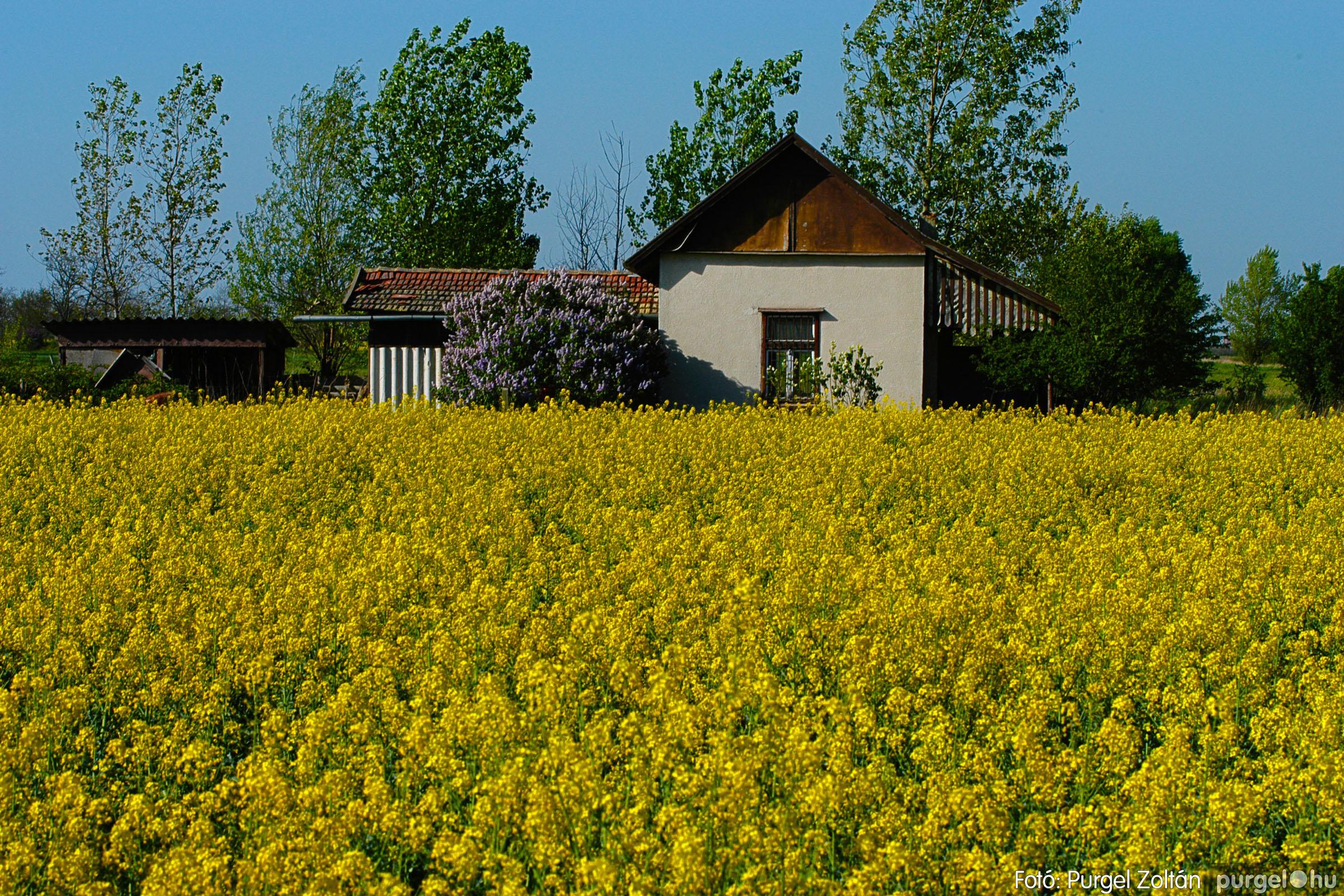 2007.04.21. 008 Szélmalom és Kontra - Fotó:PURGEL ZOLTÁN© DSC_0019q.jpg