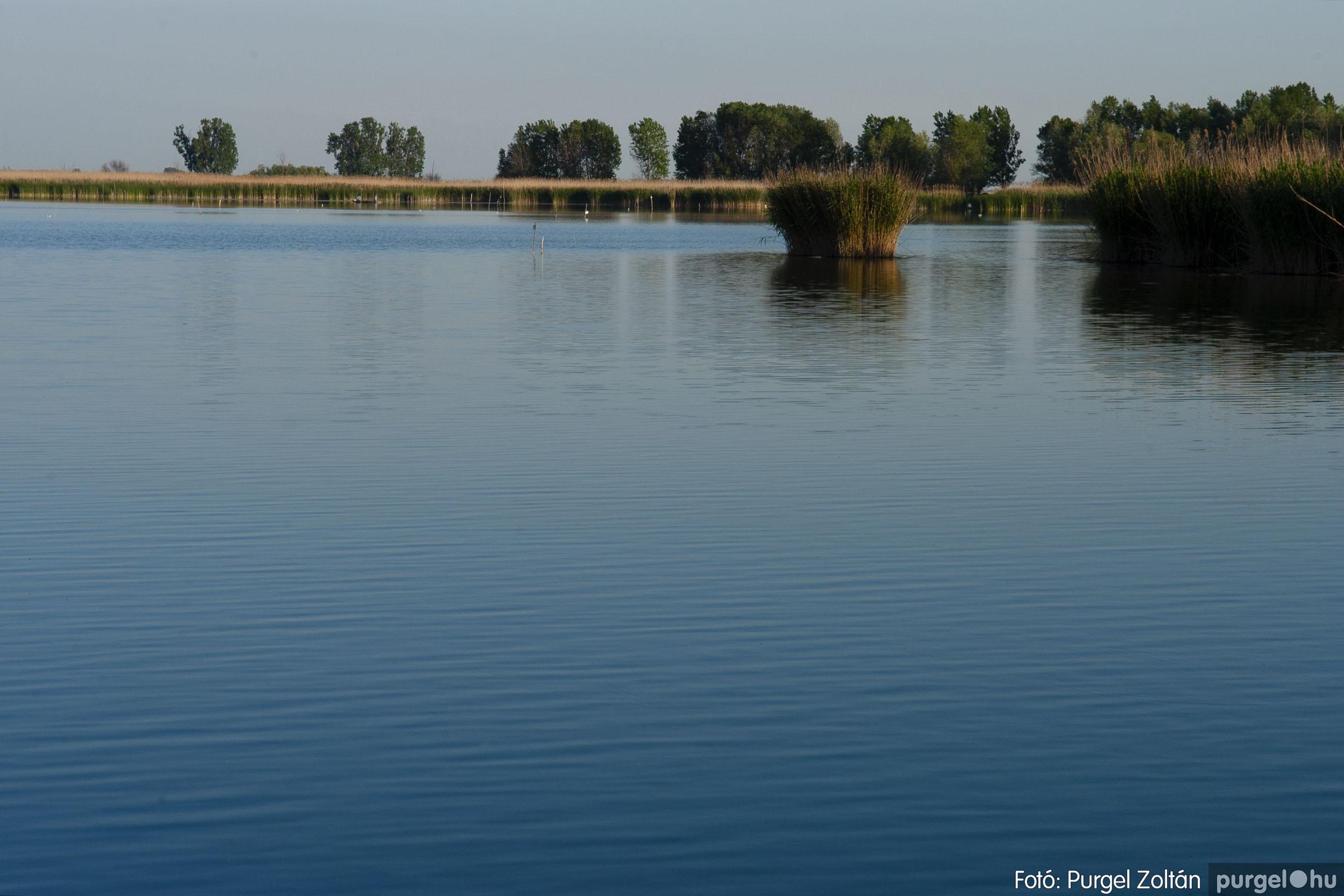 2007.05.14. 006 Vadvirágos Lándor és környéke - Fotó:PURGEL ZOLTÁN© DSC_0144q.jpg