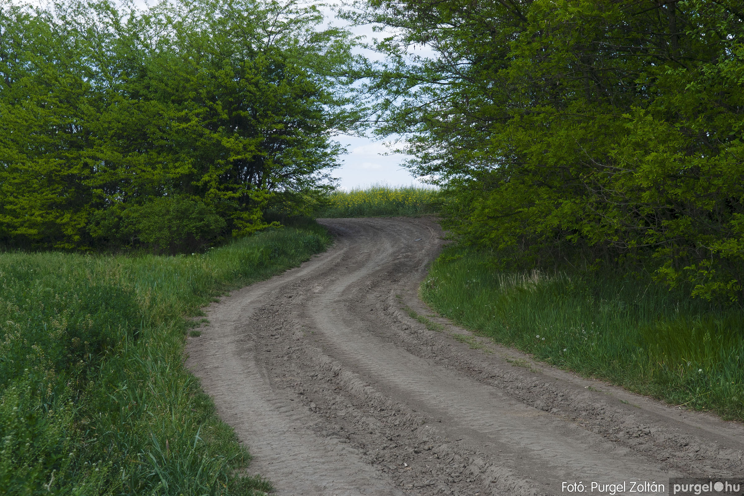 2007.04.30. 004 Barangolás a Kontrában - Fotó:PURGEL ZOLTÁN© DSC_0136q.jpg