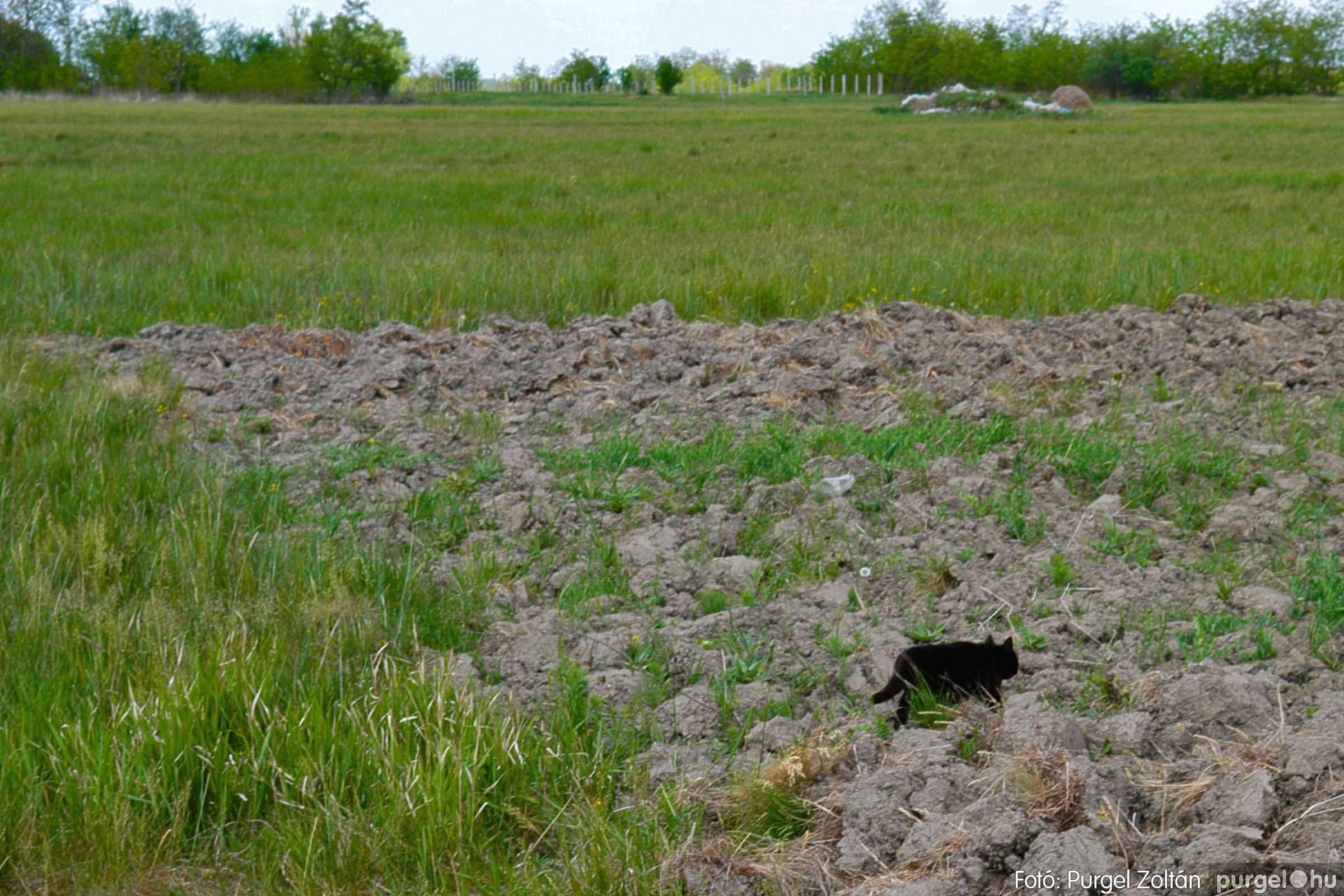 2007.04.30. 001 Barangolás a Kontrában - Fotó:PURGEL ZOLTÁN© DSC_0129q.jpg