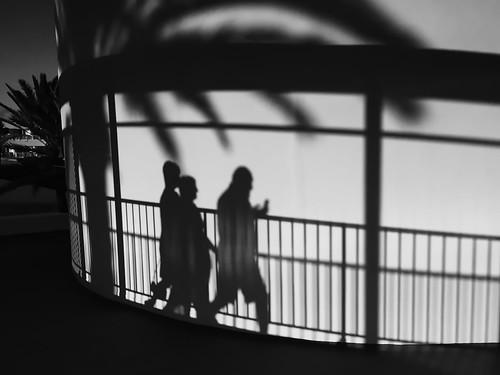 schatten shadow sonnenuntergang sundown sunset sw bw schwarzweis blackwhite blanconegro monochrome noiretblanc zwartwit hipsta hipstamatic iphone