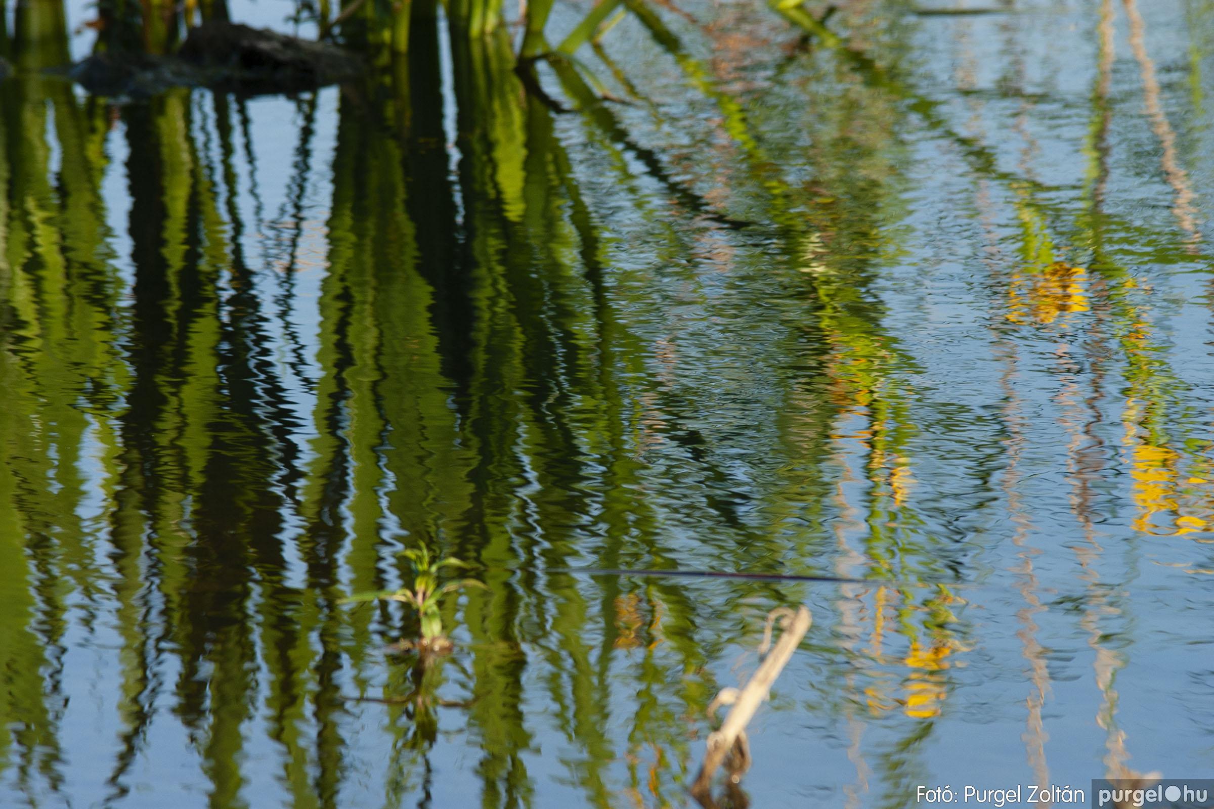 2007.05.14. 003 Vadvirágos Lándor és környéke - Fotó:PURGEL ZOLTÁN© DSC_0139q.jpg