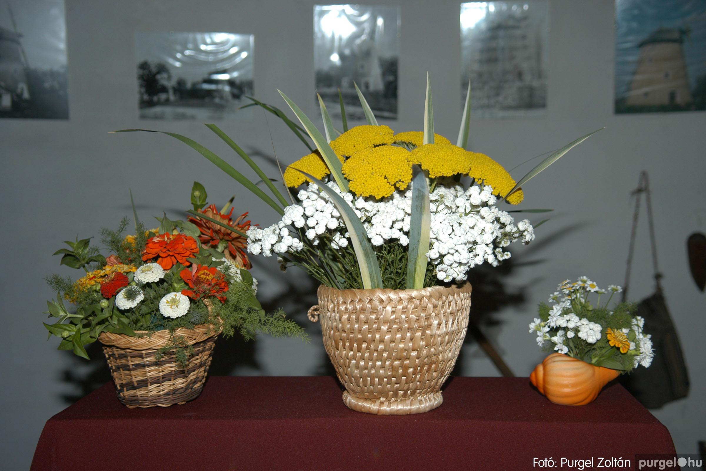 2007.06.30. 122 Szegváriak Szegvárért Közösségfejlesztők Egyesület civil nap - Fotó:PURGEL ZOLTÁN© DSC_0141q.jpg