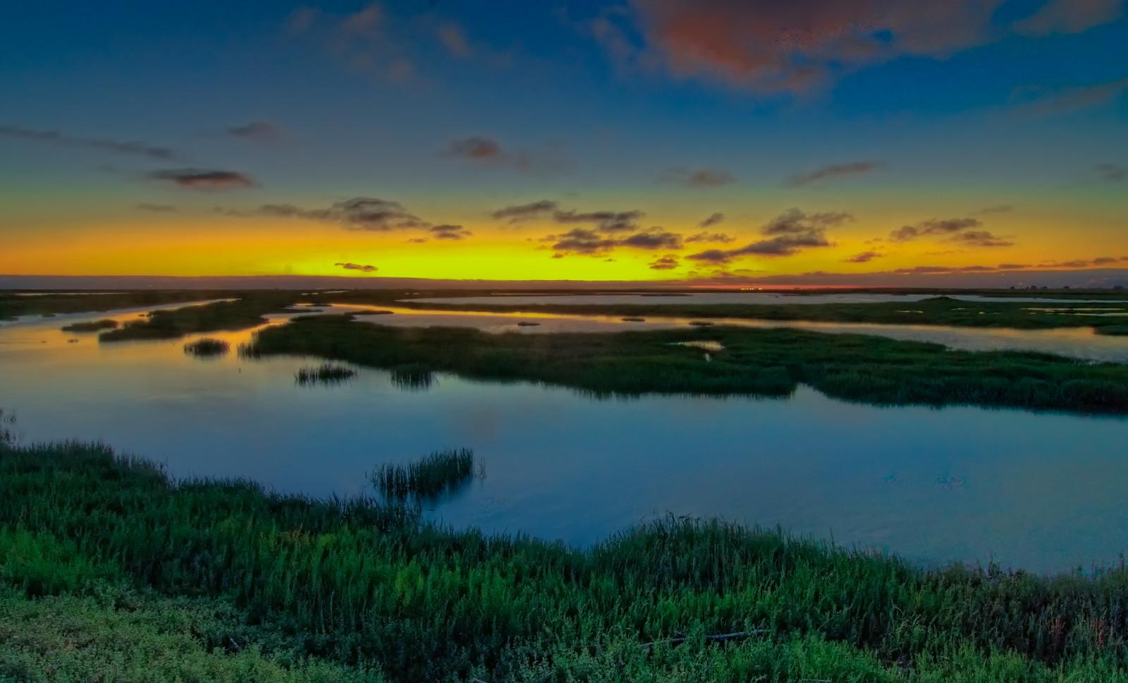 photo of san francisco bay wetlands