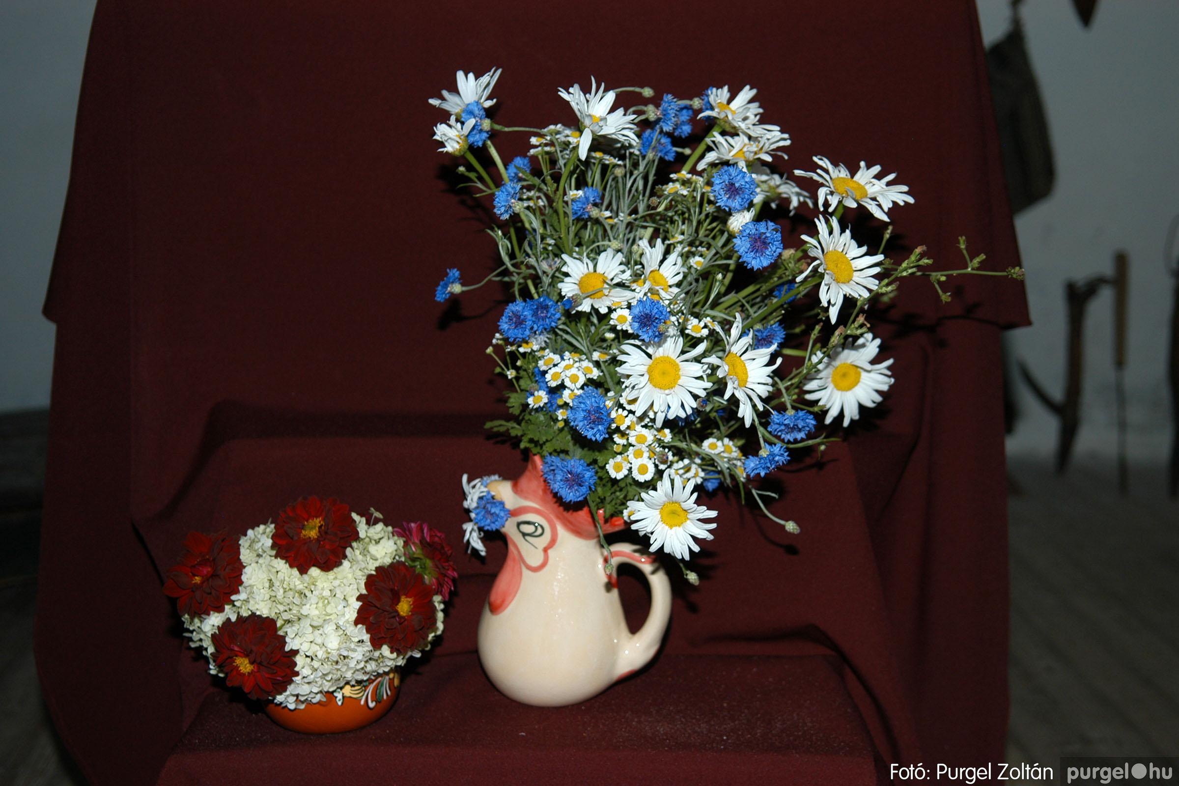 2007.06.30. 124 Szegváriak Szegvárért Közösségfejlesztők Egyesület civil nap - Fotó:PURGEL ZOLTÁN© DSC_0143q.jpg