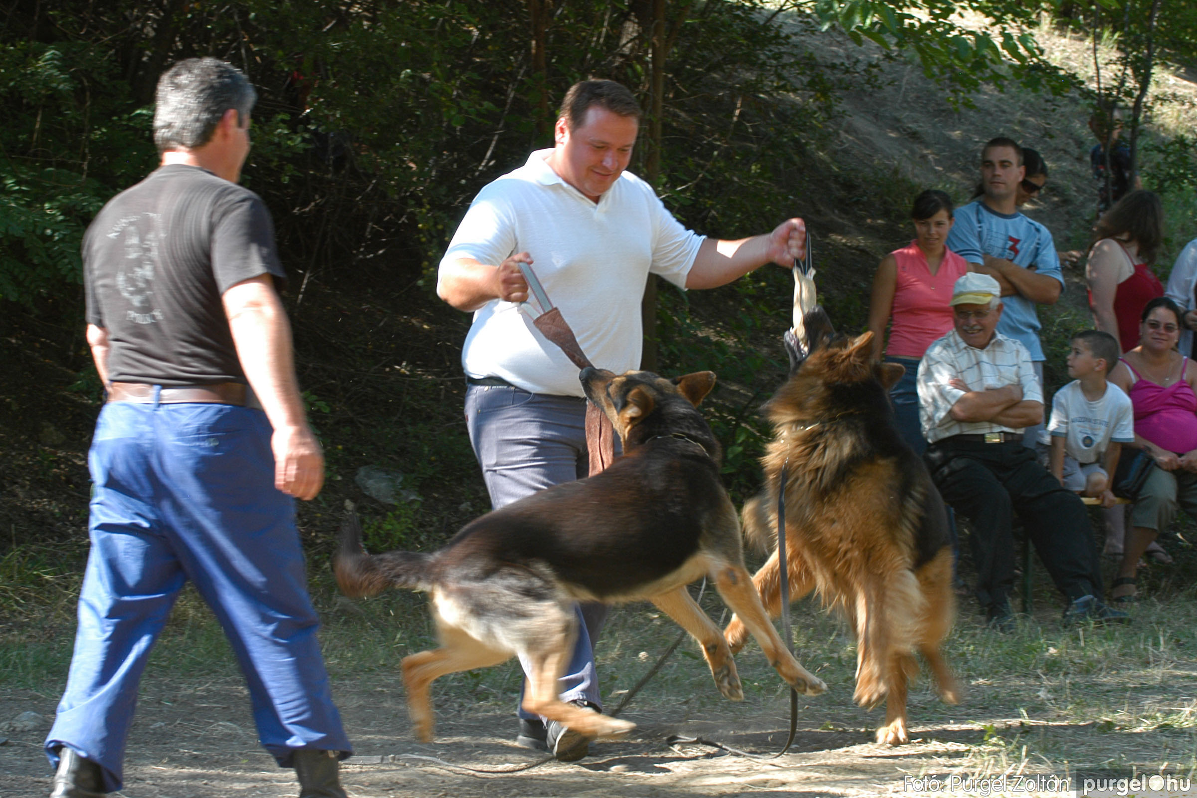 2007.07.07. 154 Tófesztivál - Fotó:PURGEL ZOLTÁN© DSC_0221q.jpg