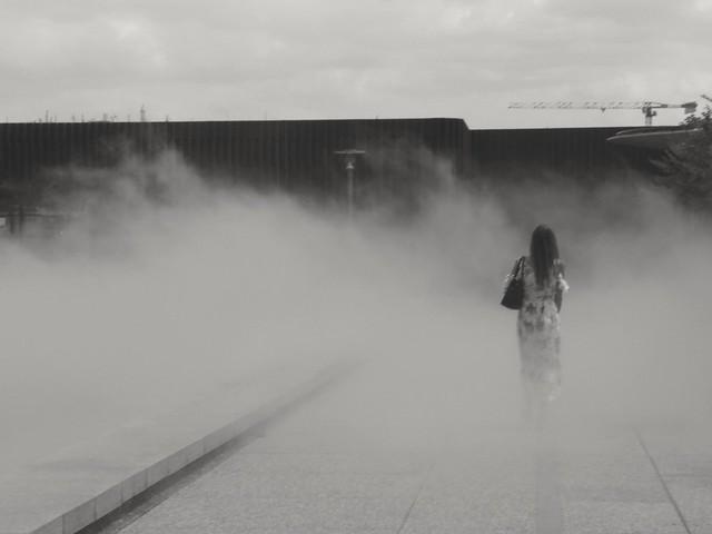 Élégante même dans le brouillard..Chic even in the fog...
