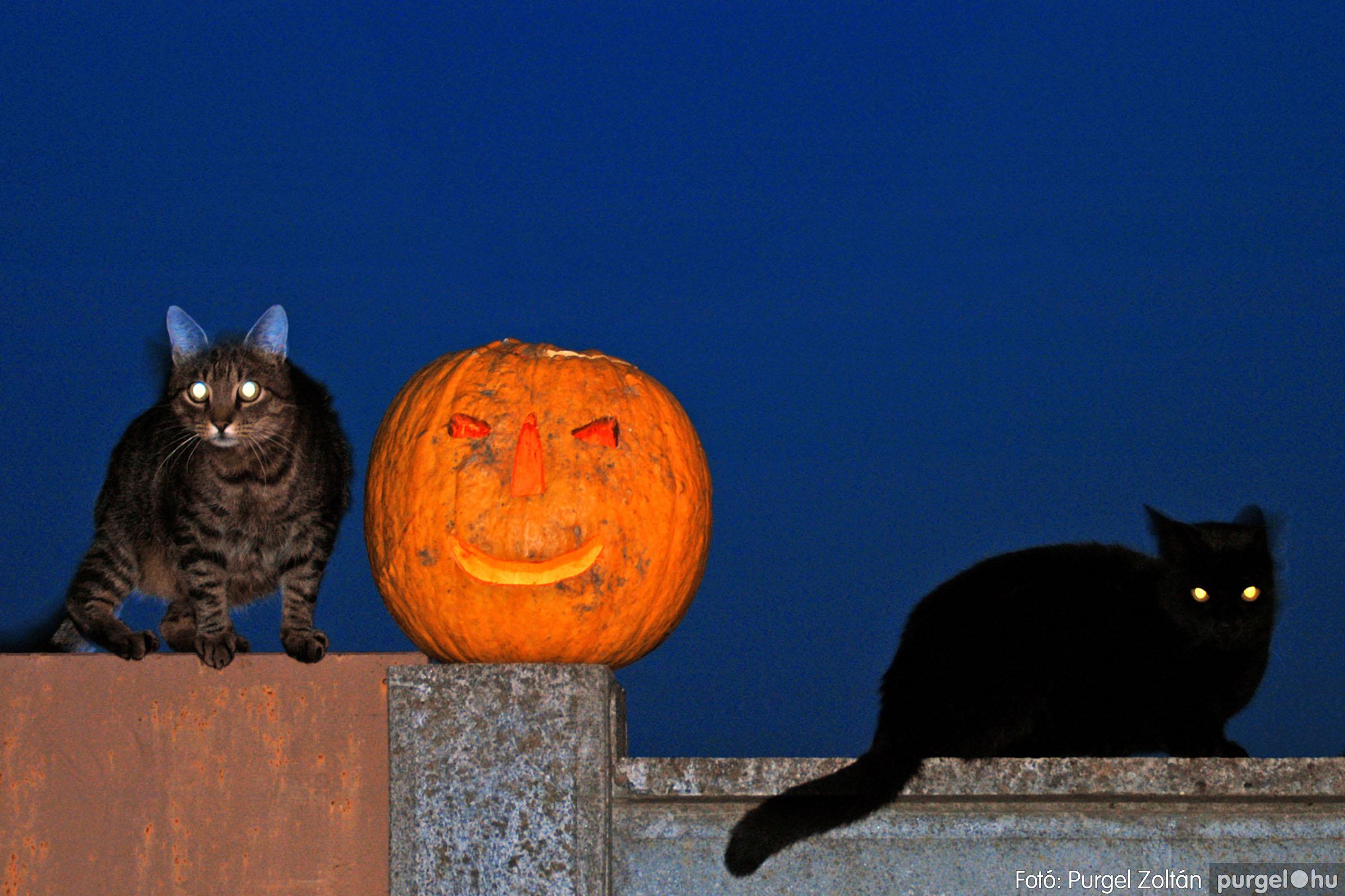 034 Örök pillanatok fotókiállításom képei - Halloween napján.jpg