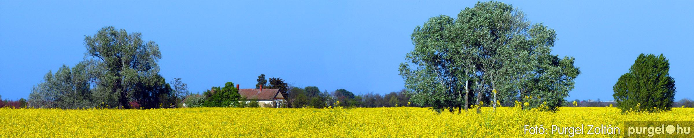039 Örök pillanatok fotókiállításom képei - Szegvári határ panoráma · The ruins of Szegvár castle - Fotó:PURGEL ZOLTÁN©.jpg
