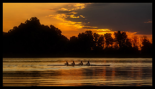 2019 burlingtonbay canon5dmarkiv hamilton rowers sunrise waterfronttrail ontario canada imga6844e golden sky silhouette fieldofgold ownthepodium