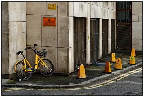 The Yellow Zone