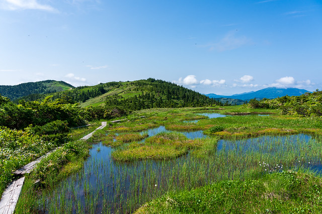 左奥に会津駒ケ岳、、右奥の燧ケ岳の雲はとれない