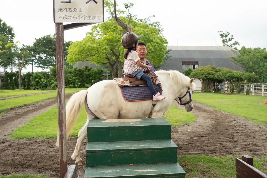 Saitama_childrens_ZOO-32