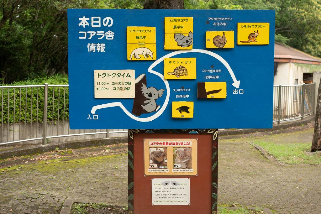Saitama_childrens_ZOO-19