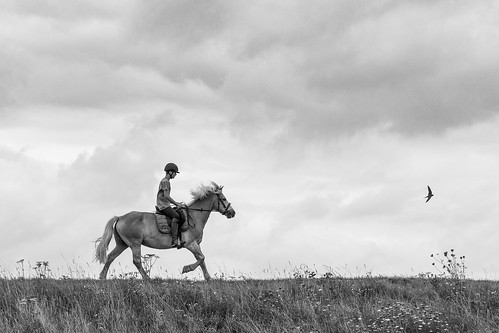 Youngster riding a horse, B&W | by Ron@ld53