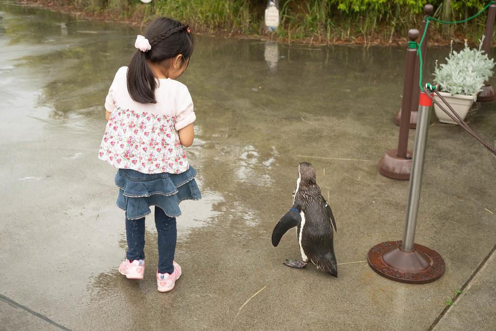 Saitama_childrens_ZOO-45