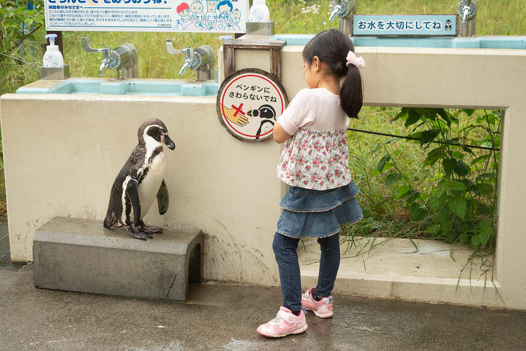Saitama_childrens_ZOO-46
