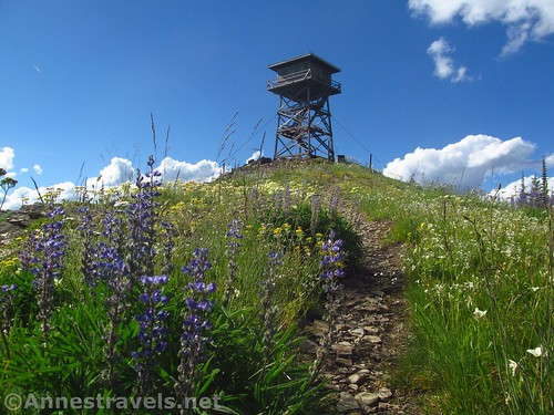 Climbing to the Berry Mountain Lookout in the Cabinet Mountains Wilderness, Montana