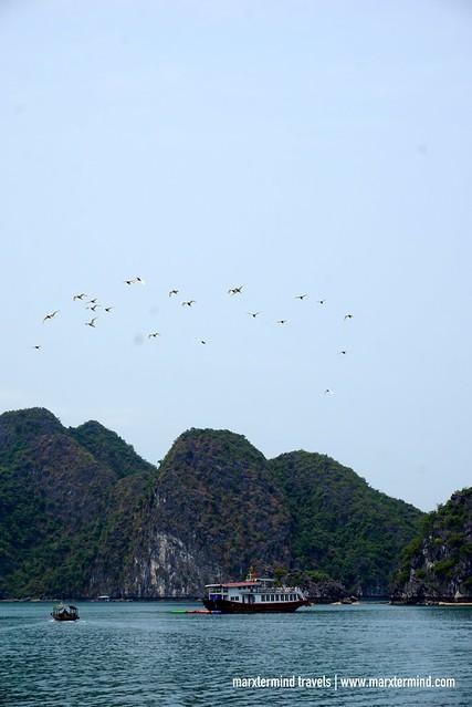 Lan Ha Bay Vietnam