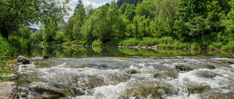 Švihák rožnovský: Rožnovská Bečva