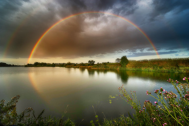Rainbow romance (Regenbogen Romanze)