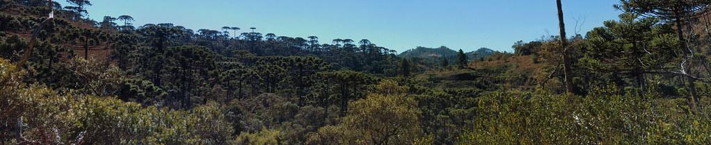 Panorama of the view at Trilha do Rio Sapucaí at Parque Estadual Campos do Jordão