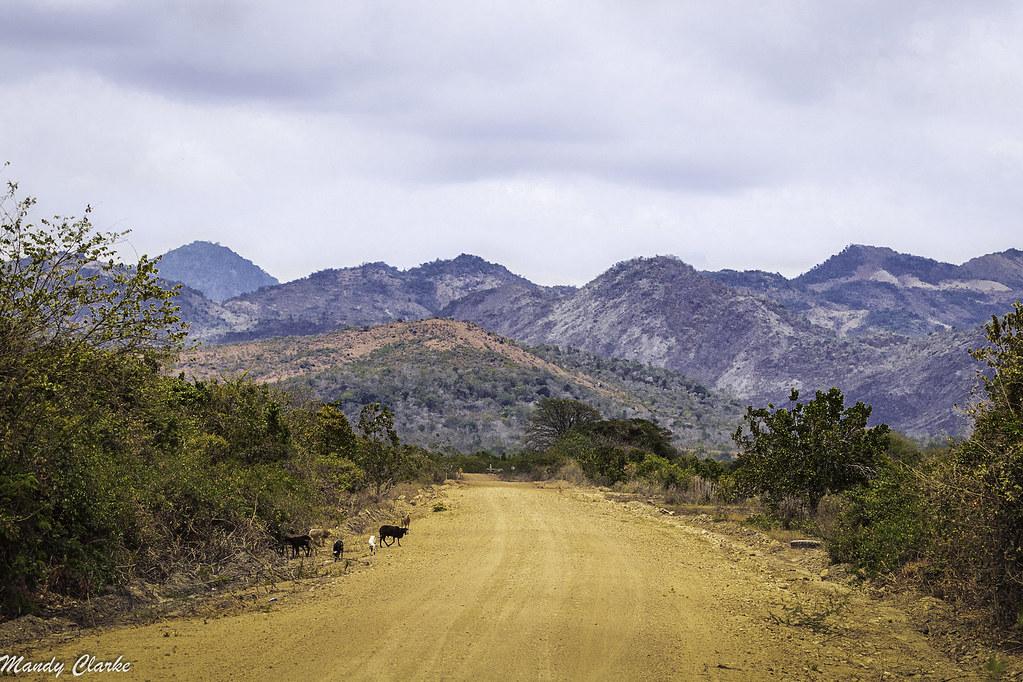Rupununi Savannahs - Guyana