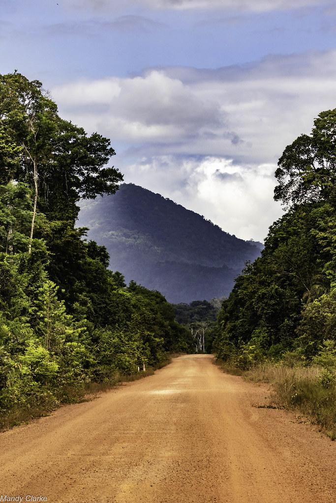 Iwokrama Forest - Guyana