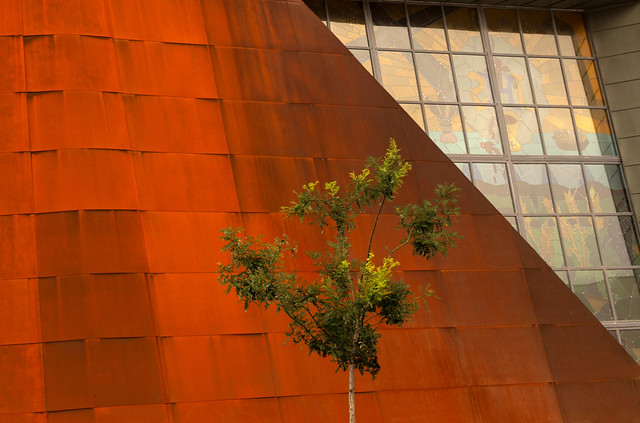 Árbol y arquitectura o architextura
