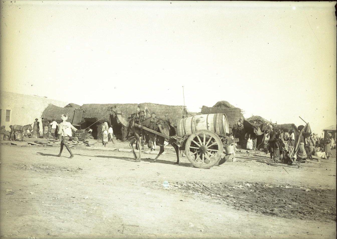 98. Джибути. Верблюжий «водопровод» перевозка воды на верблюде