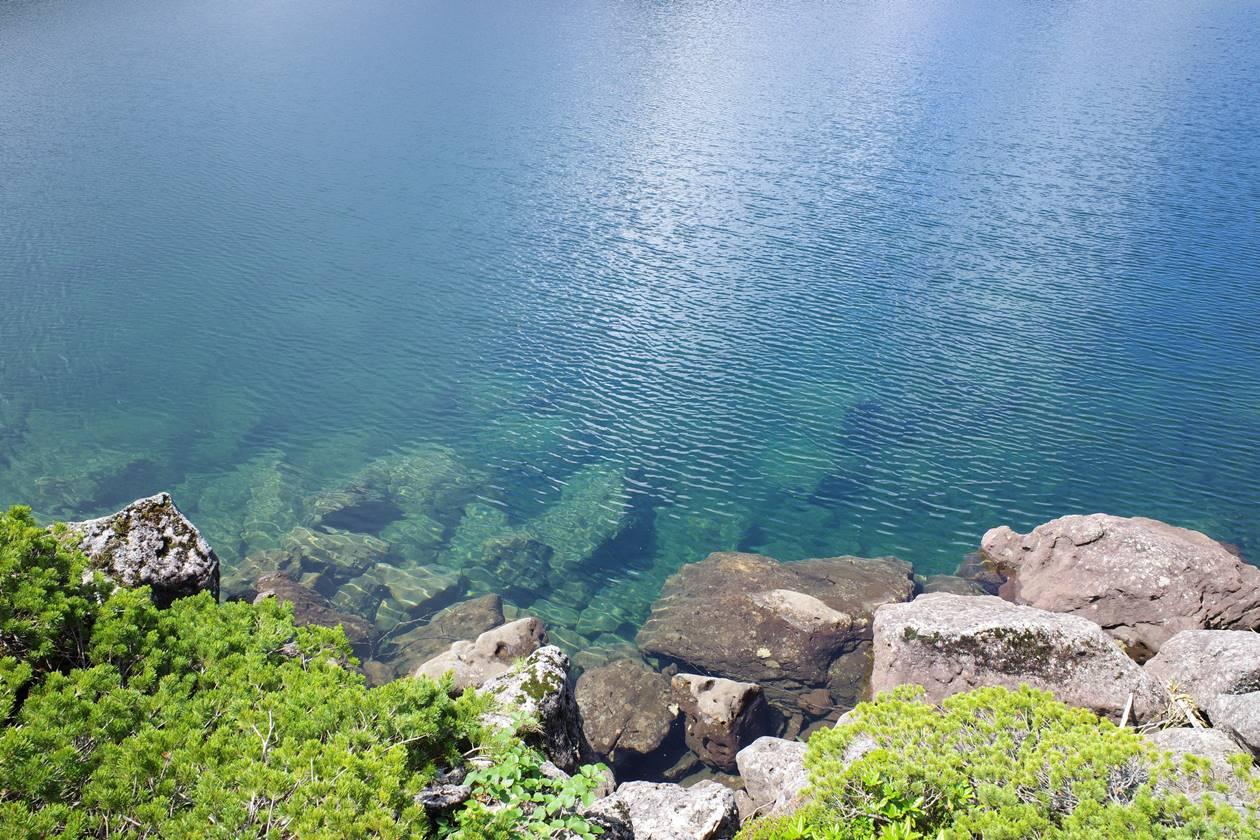 白馬大池の透き通った水