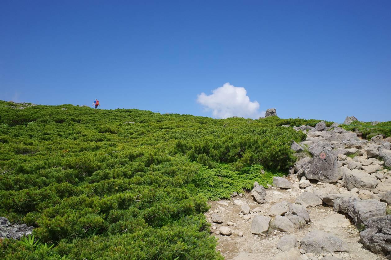 白馬乗鞍岳登山