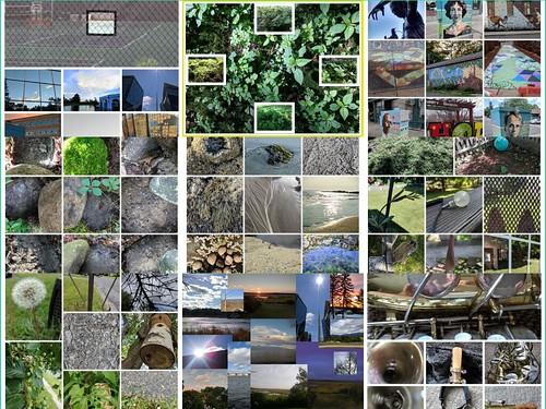CLMOOC Feldgang Feldgang Collage