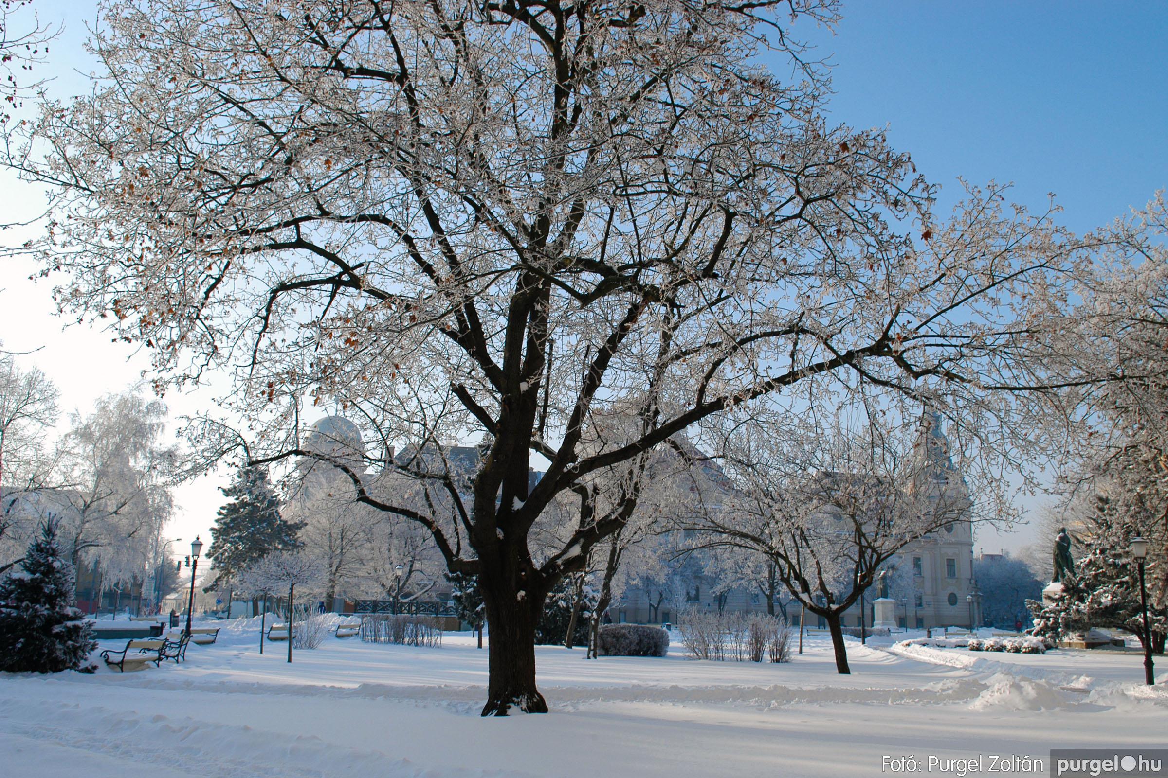 2012.02.08. 016 Szentes hóban-fagyban - Fotó:PURGEL ZOLTÁN© DSC_0097q.jpg