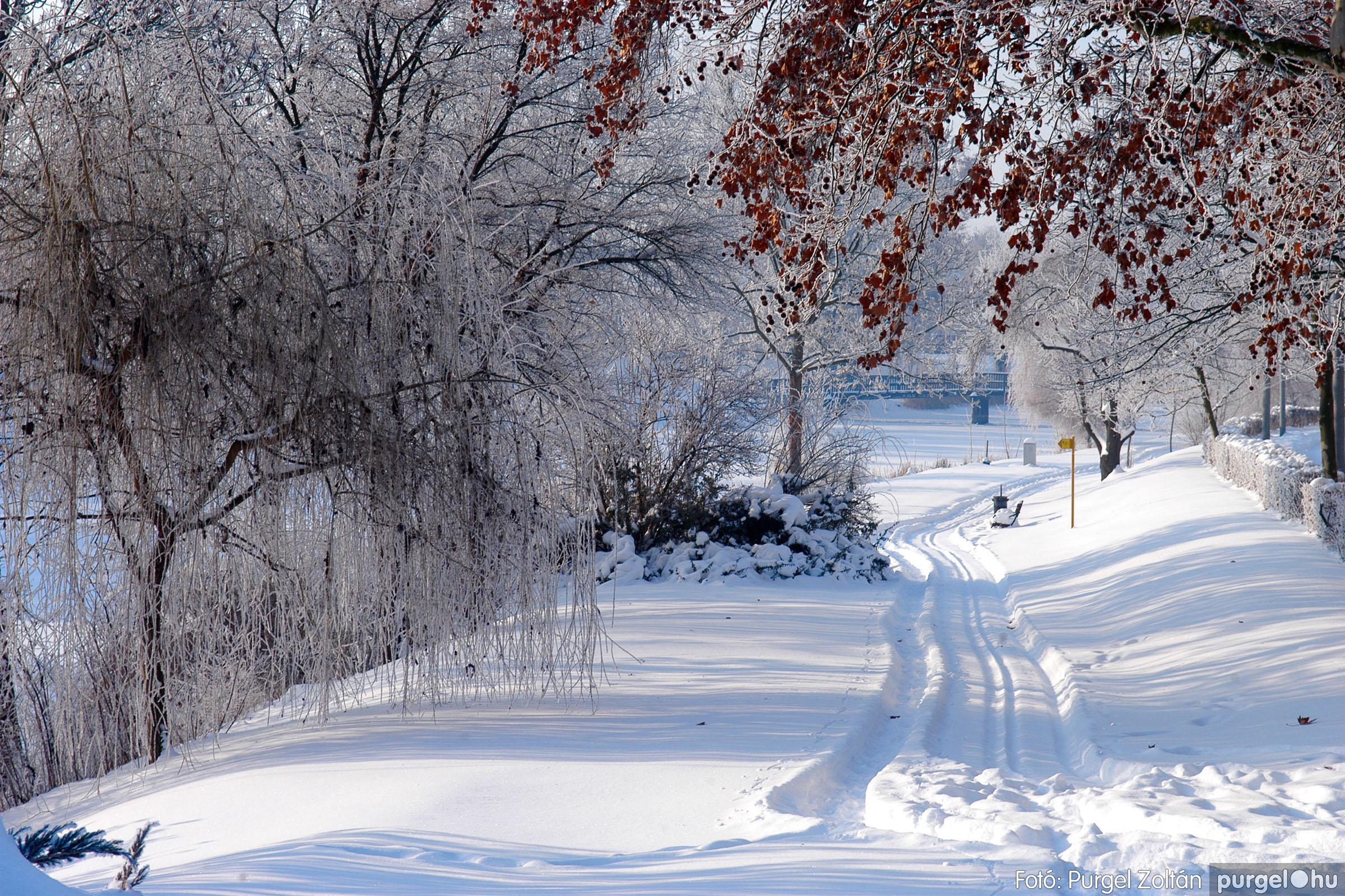 2012.02.08. 019 Szentes hóban-fagyban - Fotó:PURGEL ZOLTÁN© DSC_0104q.jpg