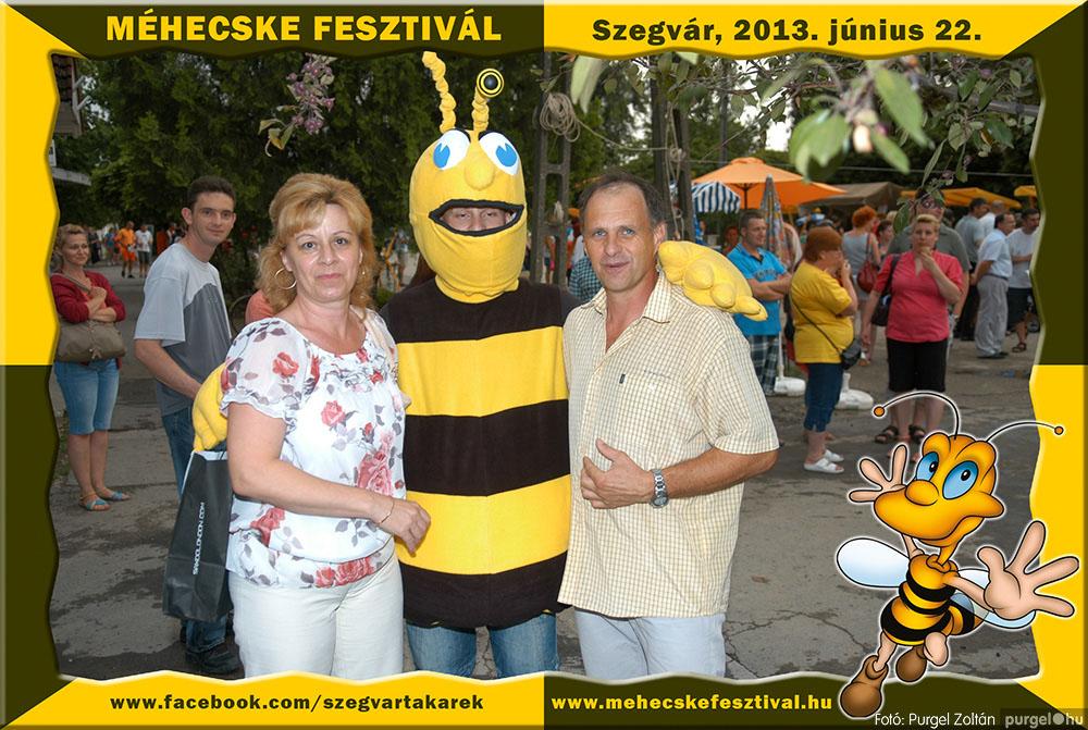 2013.06.22. 318 Szegvár és Vidéke Tak. Szöv. - Méhecske Fesztivál 2013. - Fotó:PURGEL ZOLTÁN©.jpg