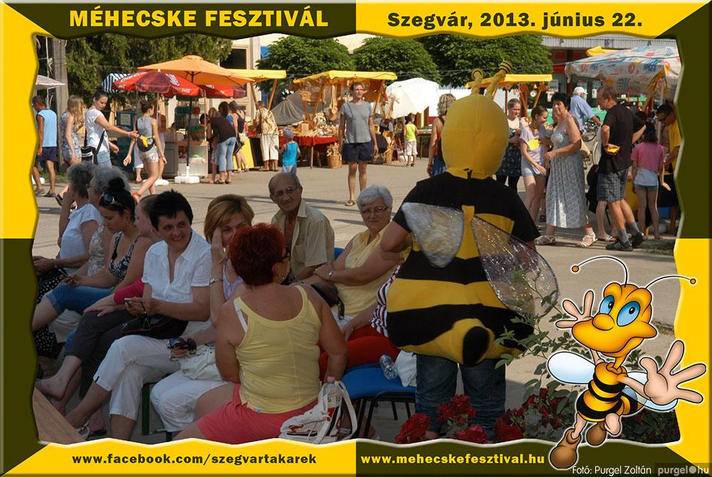 2013.06.22. 169 Szegvár és Vidéke Tak. Szöv. - Méhecske Fesztivál 2013. - Fotó:PURGEL ZOLTÁN©.jpg