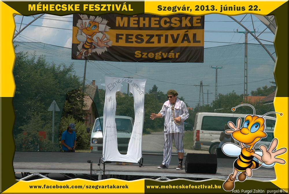2013.06.22. 036 Szegvár és Vidéke Tak. Szöv. - Méhecske Fesztivál 2013. - Fotó:PURGEL ZOLTÁN©.jpg