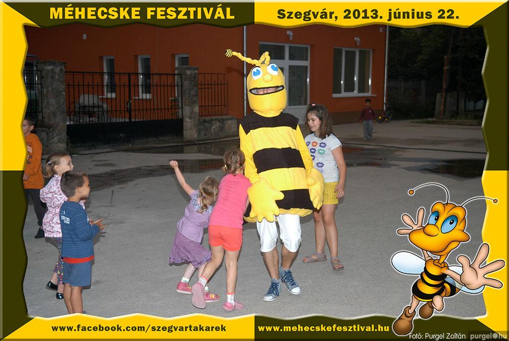 2013.06.22. 353 Szegvár és Vidéke Tak. Szöv. - Méhecske Fesztivál 2013. - Fotó:PURGEL ZOLTÁN©.jpg