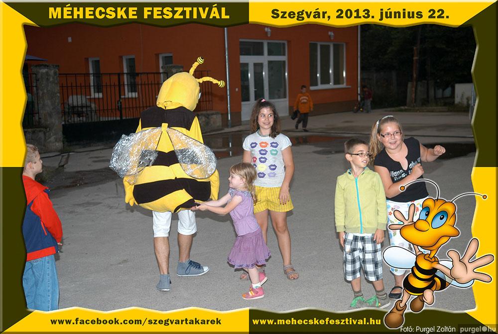 2013.06.22. 352 Szegvár és Vidéke Tak. Szöv. - Méhecske Fesztivál 2013. - Fotó:PURGEL ZOLTÁN©.jpg