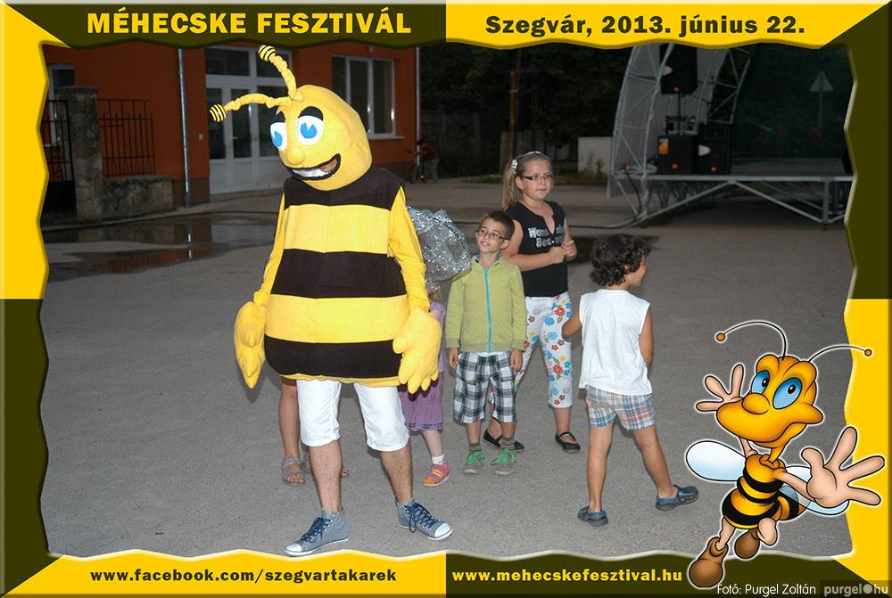 2013.06.22. 351 Szegvár és Vidéke Tak. Szöv. - Méhecske Fesztivál 2013. - Fotó:PURGEL ZOLTÁN©.jpg