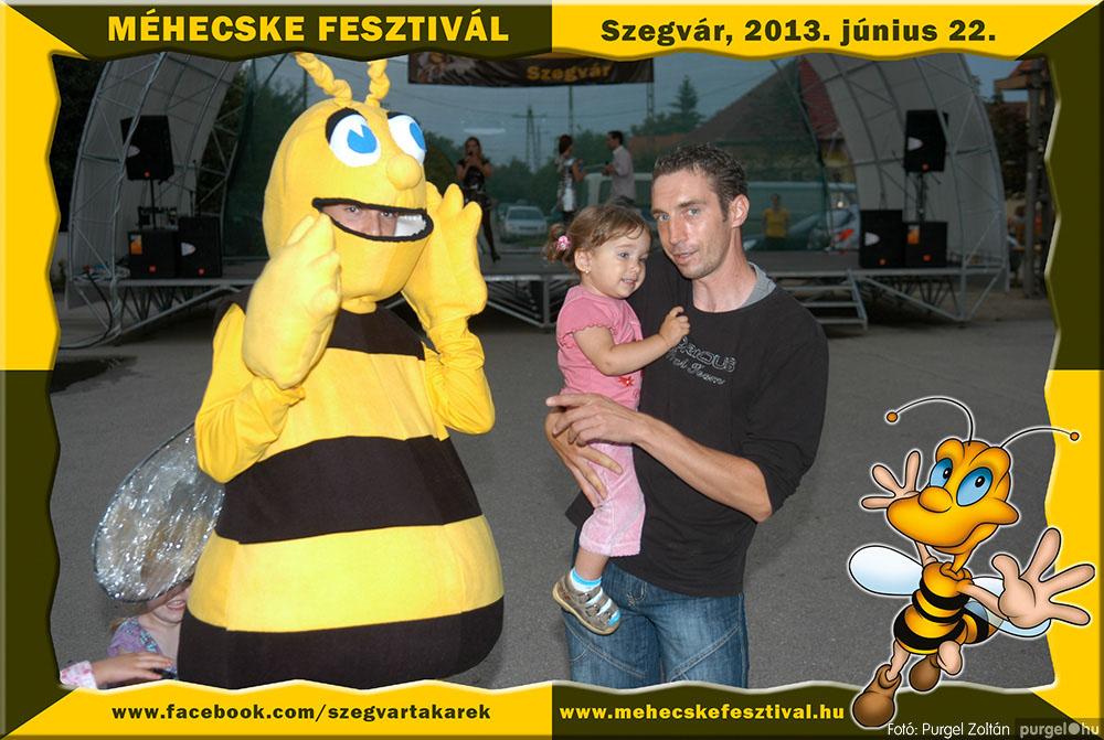 2013.06.22. 346 Szegvár és Vidéke Tak. Szöv. - Méhecske Fesztivál 2013. - Fotó:PURGEL ZOLTÁN©.jpg