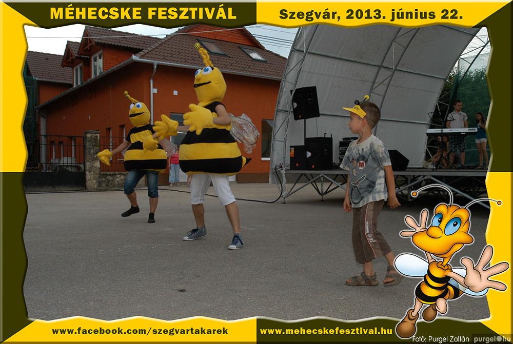 2013.06.22. 232 Szegvár és Vidéke Tak. Szöv. - Méhecske Fesztivál 2013. - Fotó:PURGEL ZOLTÁN©.jpg