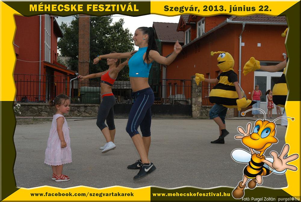 2013.06.22. 230 Szegvár és Vidéke Tak. Szöv. - Méhecske Fesztivál 2013. - Fotó:PURGEL ZOLTÁN©.jpg