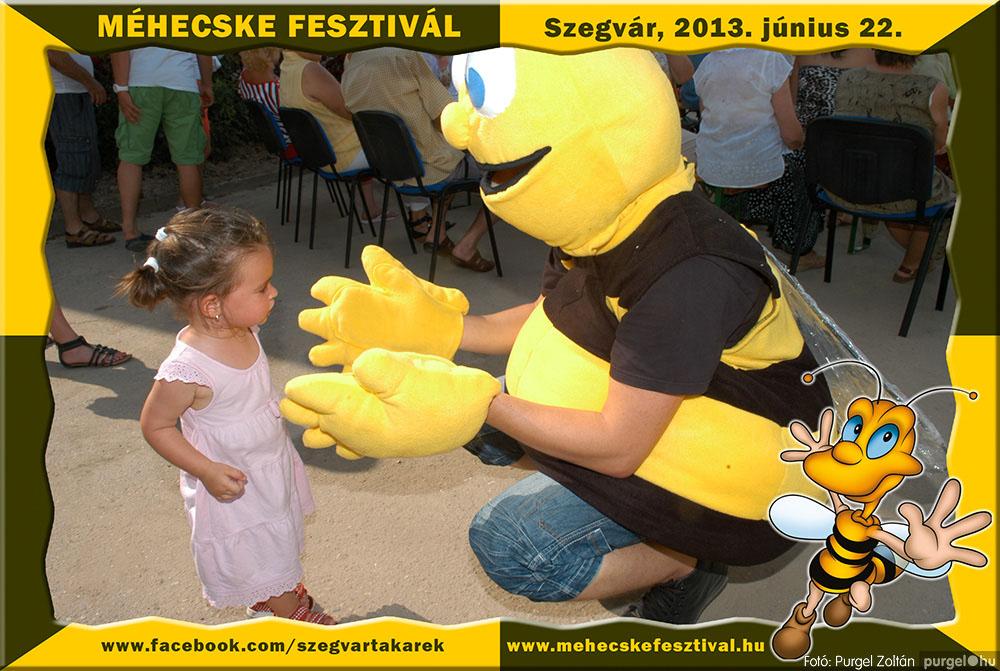2013.06.22. 174 Szegvár és Vidéke Tak. Szöv. - Méhecske Fesztivál 2013. - Fotó:PURGEL ZOLTÁN©.jpg