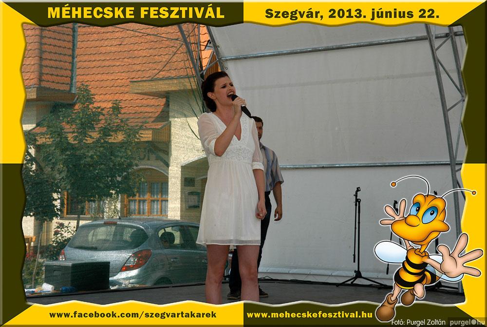 2013.06.22. 168 Szegvár és Vidéke Tak. Szöv. - Méhecske Fesztivál 2013. - Fotó:PURGEL ZOLTÁN©.jpg