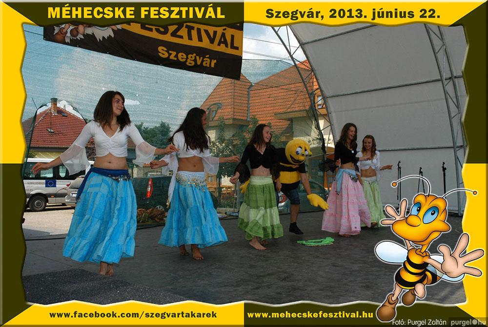 2013.06.22. 109 Szegvár és Vidéke Tak. Szöv. - Méhecske Fesztivál 2013. - Fotó:PURGEL ZOLTÁN©.jpg