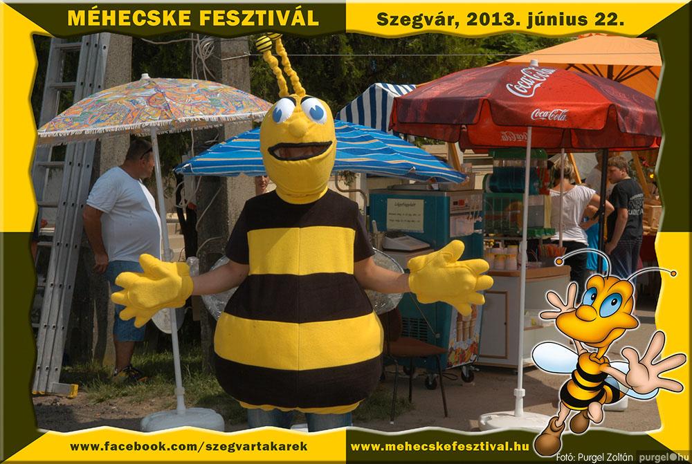 2013.06.22. 095 Szegvár és Vidéke Tak. Szöv. - Méhecske Fesztivál 2013. - Fotó:PURGEL ZOLTÁN©.jpg