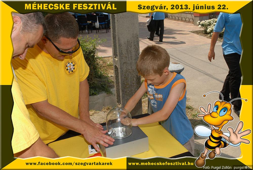 2013.06.22. 065 Szegvár és Vidéke Tak. Szöv. - Méhecske Fesztivál 2013. - Fotó:PURGEL ZOLTÁN©.jpg