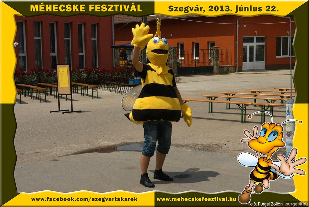 2013.06.22. 001 Szegvár és Vidéke Tak. Szöv. - Méhecske Fesztivál 2013. - Fotó:PURGEL ZOLTÁN©.jpg